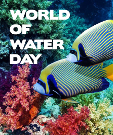 World of Water Day