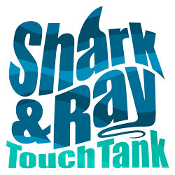 Shark & Ray Touch Tank Logo